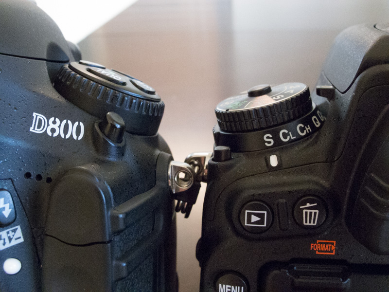 The D800's larger Release mode dial is much easier to adjust.